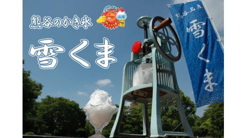 yukikumaimage
